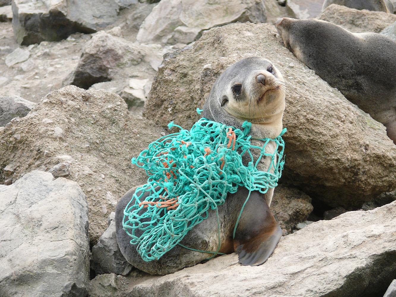 Oceanic plastic